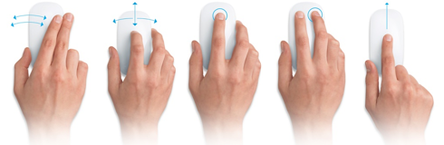 Magic Mouse: Multi Touch