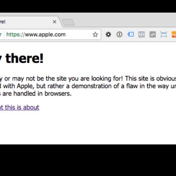 Unicode Domain im Google Chrome Browser