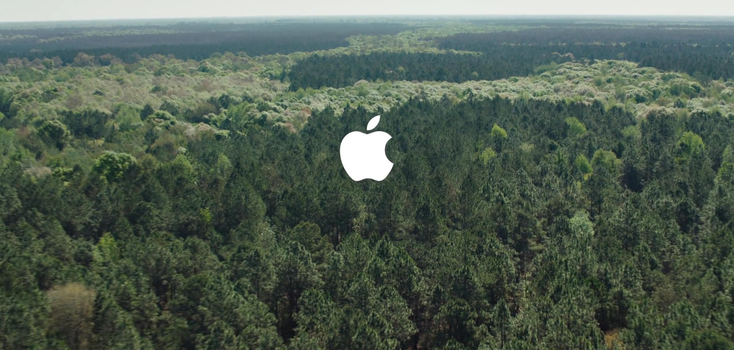 Apple kauft sich einen Wald.