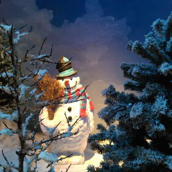 Snowman Christmas 2014