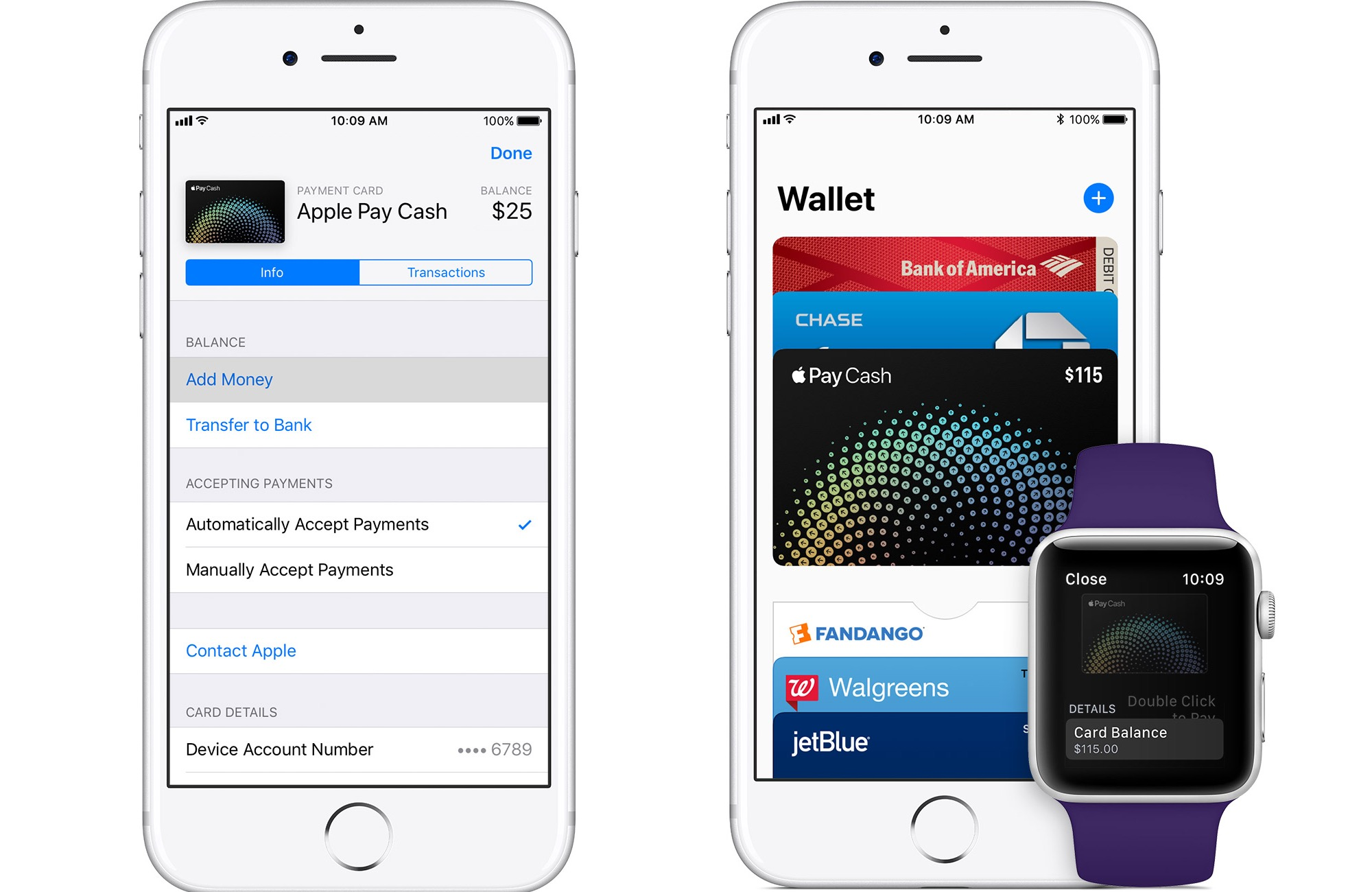 iPhone 8 mit Apple Pay Cash